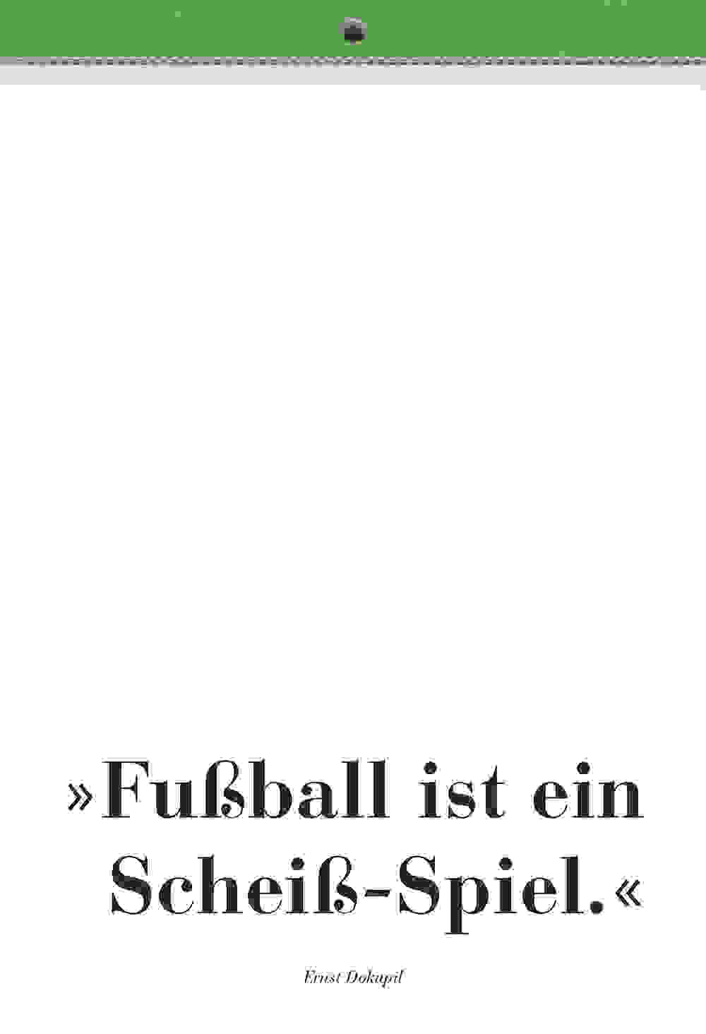 RB Fussball Kunst 2006 slider 31