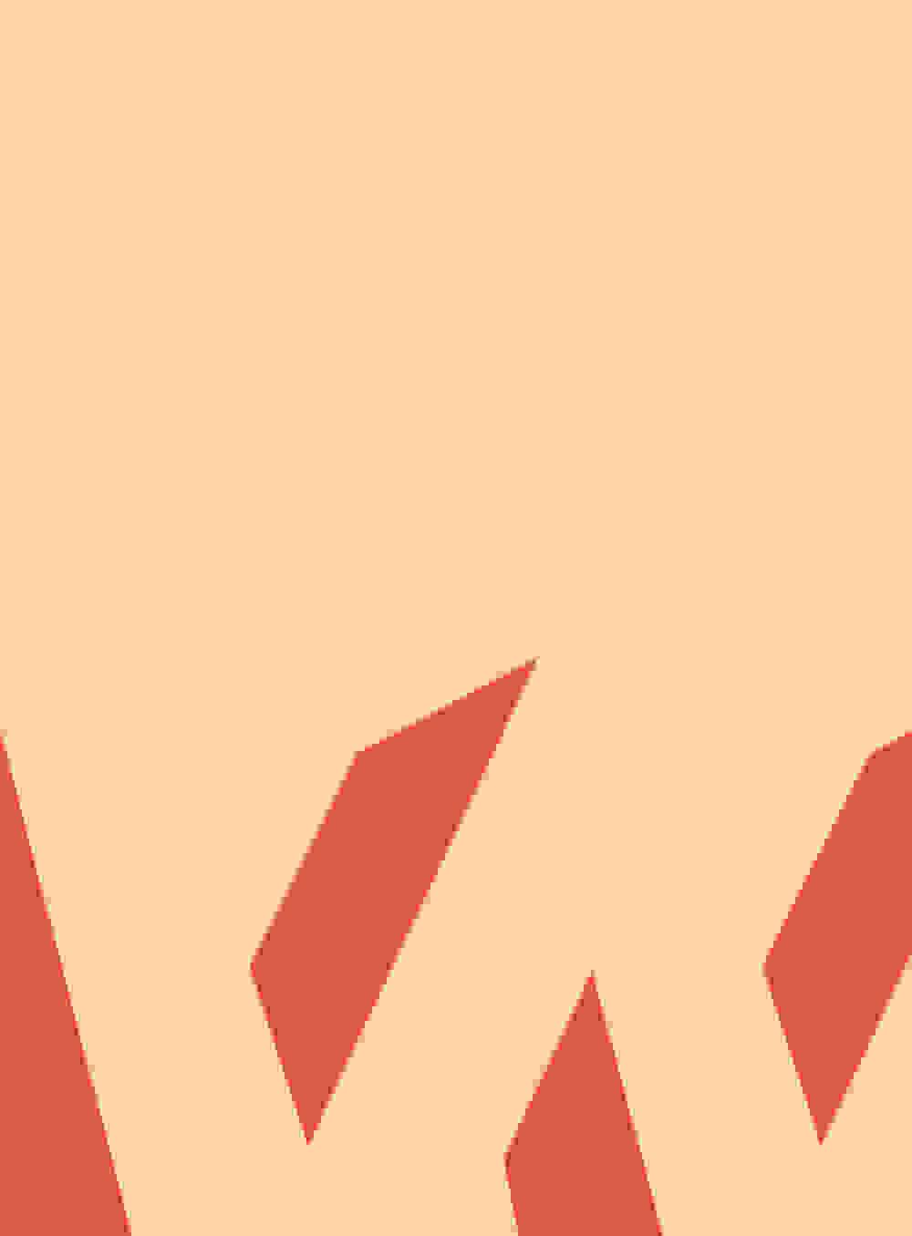 WFW19 Progr Cover 20190131 1000px Breit